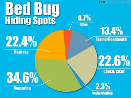 bed bug hiding spots, chart