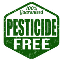 pesticide free bed bug removal